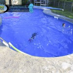 Humpback Haven Inground Pool